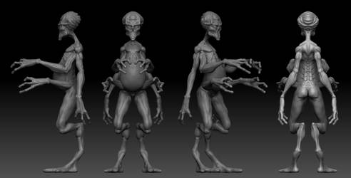 Zbrush Sketch WIP