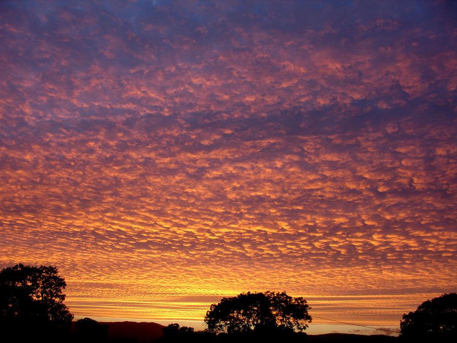 Rippled Sky by tartanink