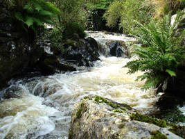 High Appin Water by tartanink
