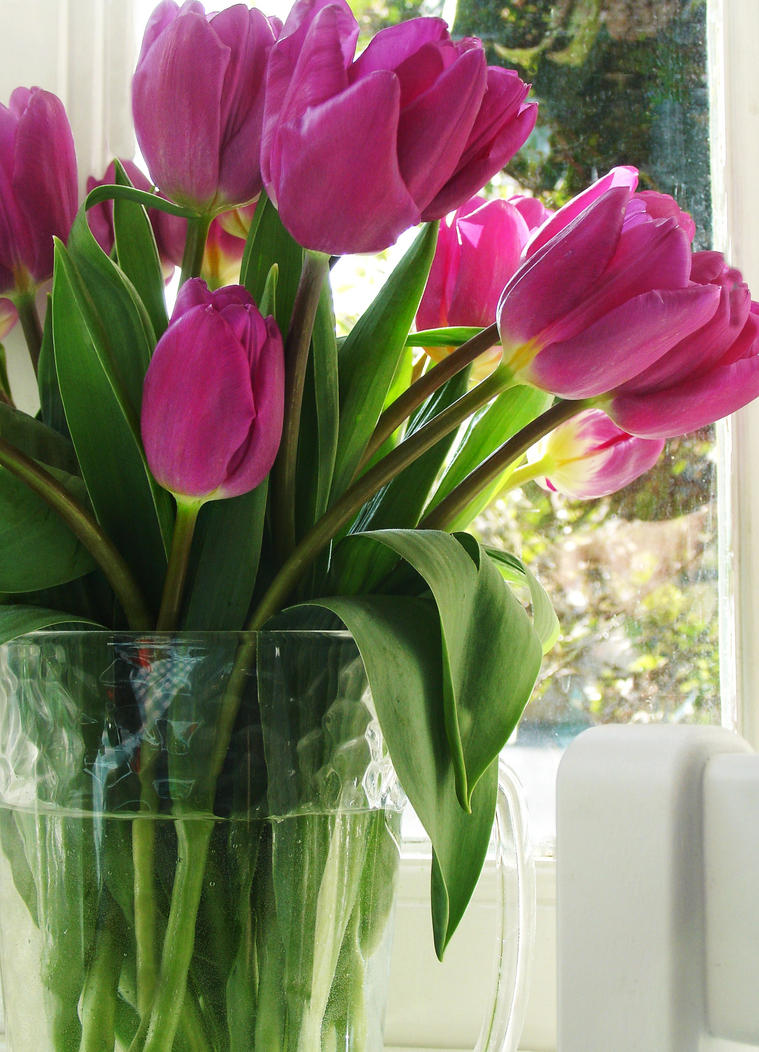 Vase of tulips by tartanink on deviantart vase of tulips by tartanink floridaeventfo Gallery