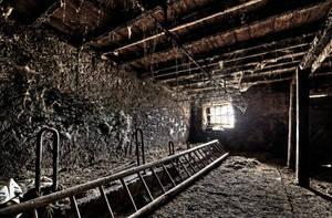 Cobwebs by stengchen