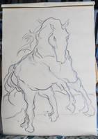 Raging Horse - Sketch no #009 by tutanvaly