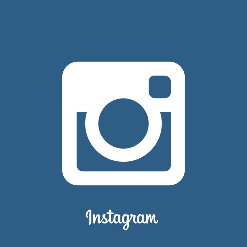 logo instagram 2015 vector