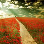 the way to dreamland
