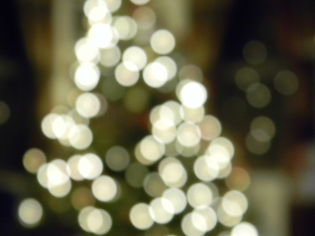 Blurry Christmas Tree Lights by hcisme123