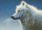 Frost (+Speedpaint)