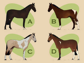 Bay + Dilute Adopts - 0/4 CLOSED