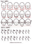 Face/Nose shapes reference