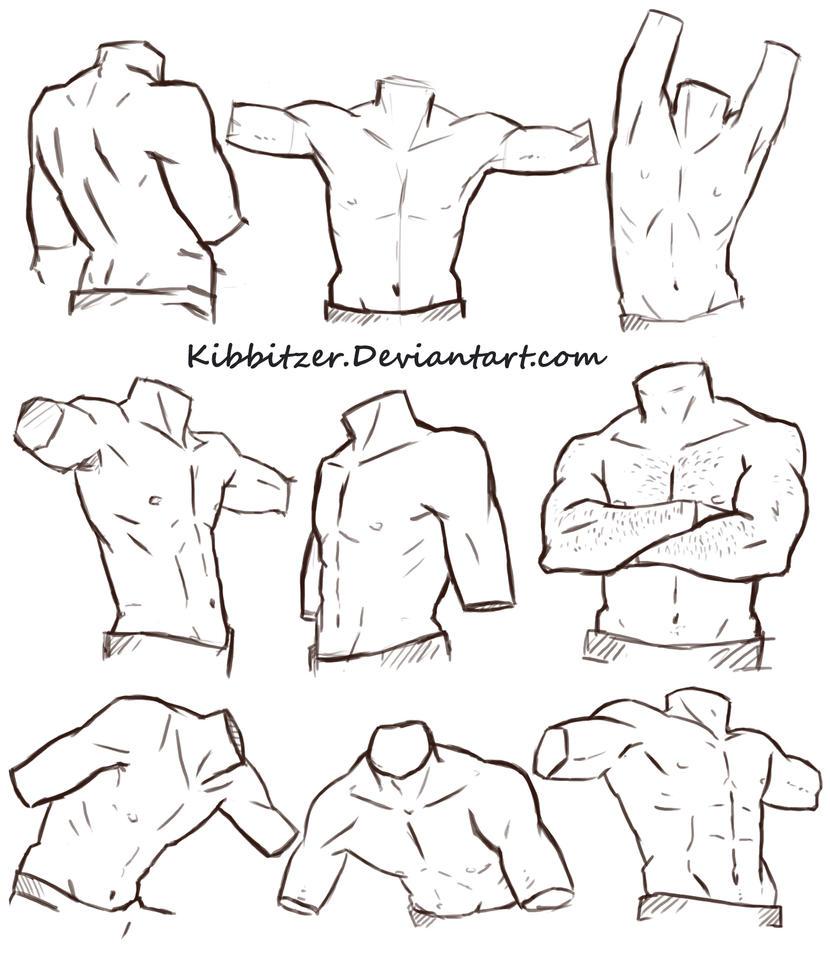 Male Torso Reference Sheet by Kibbitzer on DeviantArt