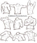 Male Torso Reference Sheet