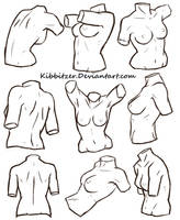 Female Torso Reference Sheet by Kibbitzer