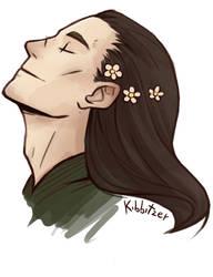 Random flowers on a random Loki by Kibbitzer