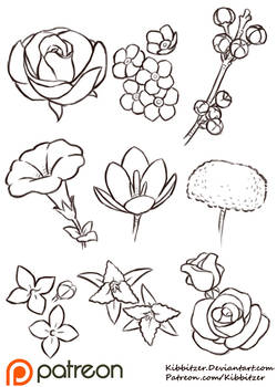 Flowers Reference Sheet