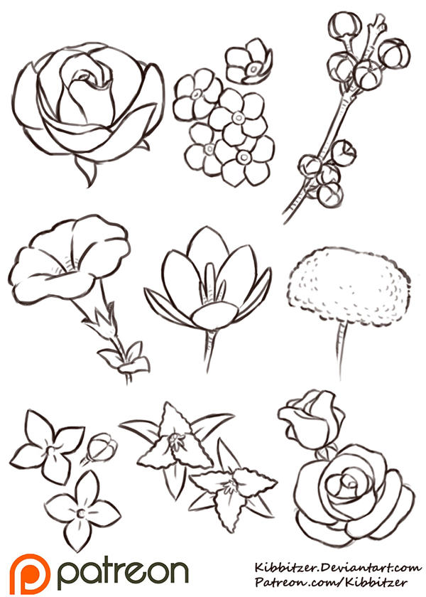 Flowers reference sheet by kibbitzer on deviantart for How to draw the flower of life step by step