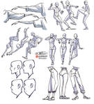 Reference sheets -PREVIEW-