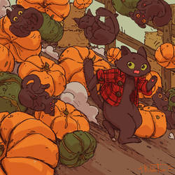 Rolling Pumpkats