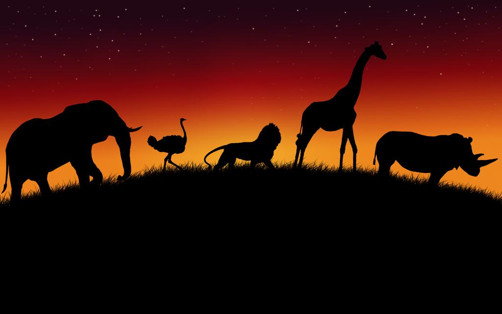 African Animals Wallpaper V2 by ~Lukasiniho on deviantART