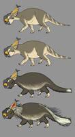 Four Pachyrhinosaurus