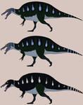 Three Spinosaurus