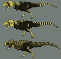 Three Tyrannosaurus by StygimolochSpinifer