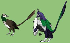 Peacock Rahonavis by StygimolochSpinifer