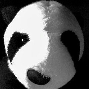 Pandapal01's Profile Picture