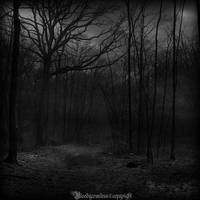 In the dark forest V by CountessBloody