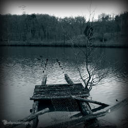 The lake II by CountessBloody