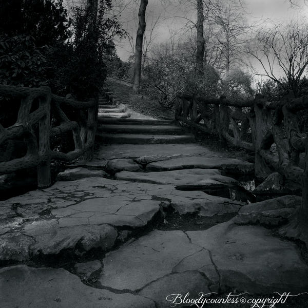 The road by CountessBloody