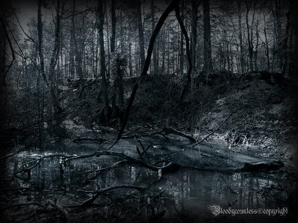 The dark marsh by CountessBloody