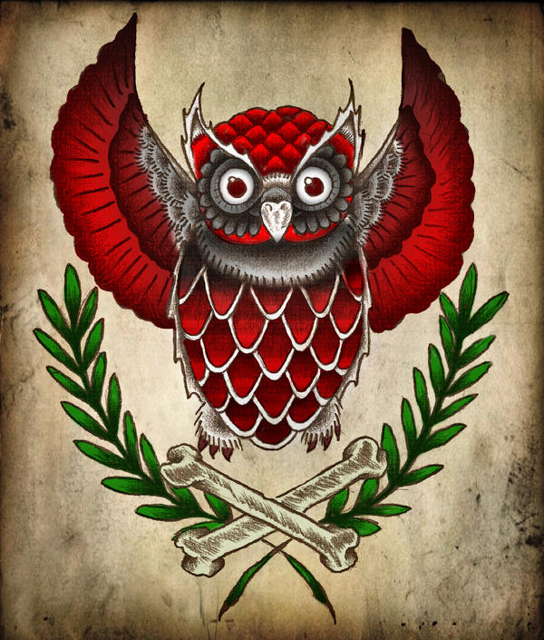 Owl... by virrewe