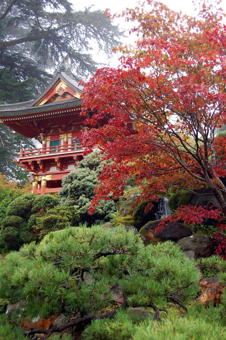 Jardin japones by despista0 on deviantart for Jardin japones