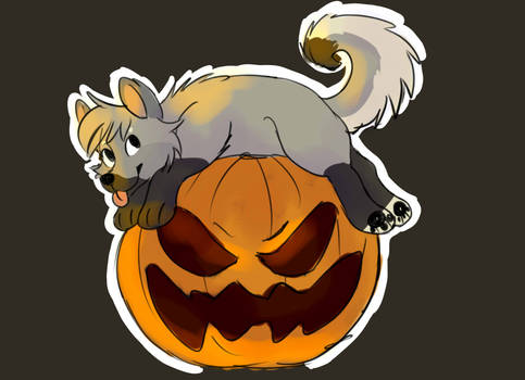 pumpking canine ych OPEN