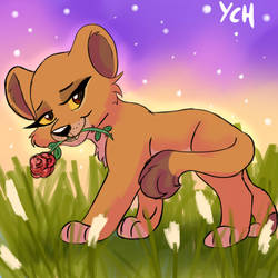Rose ych open