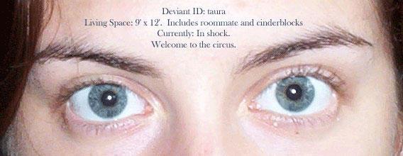 Taura's DeviantID