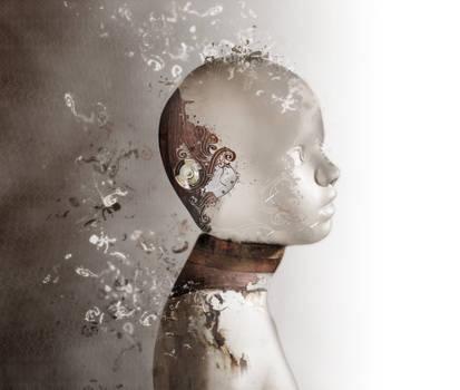 barbary cover by Yann-nguema