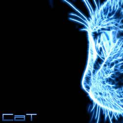 Frac Cat