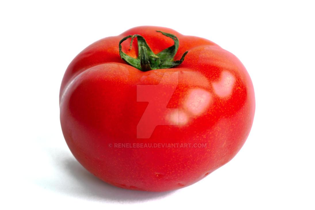 Tomato on a White Background by ReneLeBeau