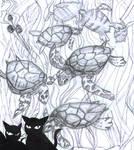 wo0t- Sea turtles