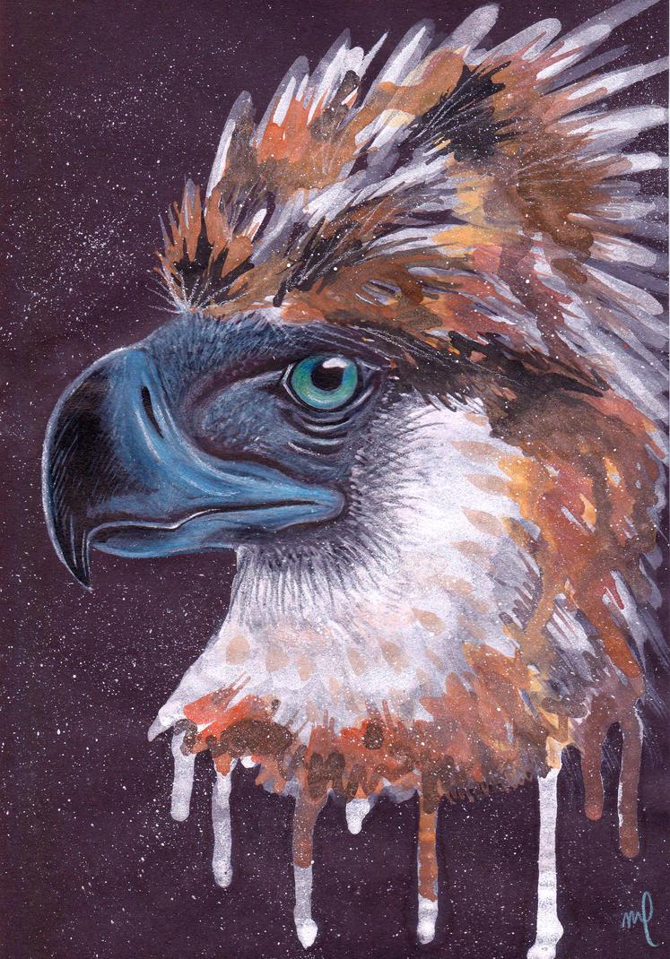 Philippine eagle by Midniterain