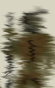RockFallRider's Profile Picture