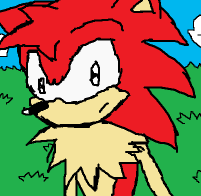 Kyler the Hedgehog by ZoomtheHedgehog360