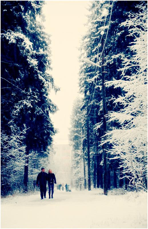Winter day by Krapivka2007