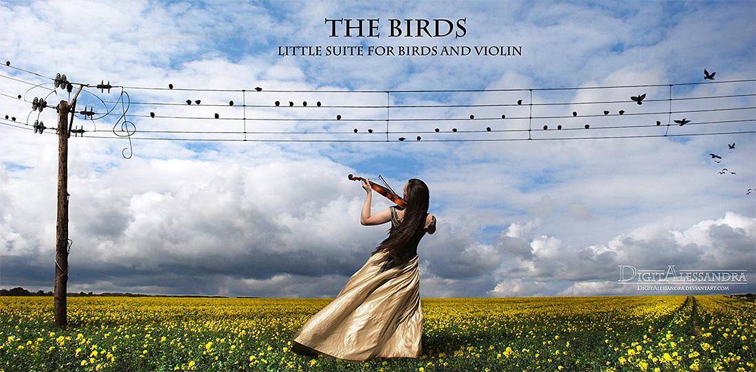 The Birds by digitalessandra