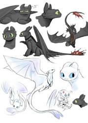 Night Fury and Light Fury by DragonArtist12