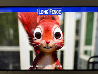 The Long Fence Squirrel