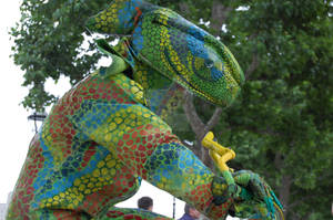 Human Chameleon