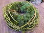 Flowerset, Green Wood Bound by sk8art