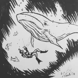Inktober 2018 #12: Whale by Ze-Freak