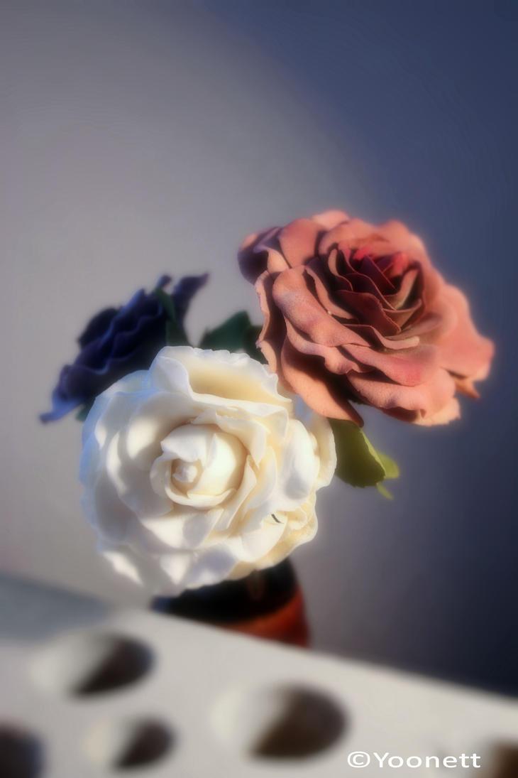 Three Roses 2 by Yoonett